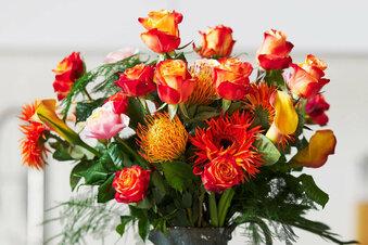 Bußgeld für Blumen trotz Corona
