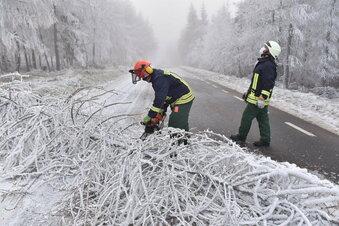Osterzgebirge: Äste brechen durch Raureif