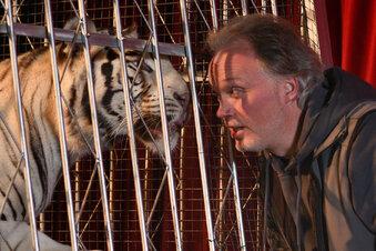 Holt Sarrasani den Tiger zurück?