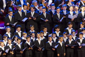 Dresdner Kreuzchor sagt alle Auftritte ab