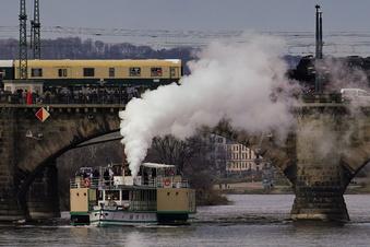 Dresdner Dampfer fahren Linienverkehr