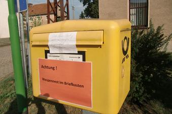 Wespen blockieren Briefkasten in Hähnichen