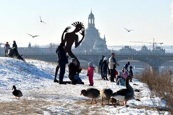 Sonniger Start in die Winterferien in Dresden