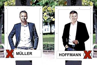 Müller schlägt Wahlkampf ohne Plakate vor