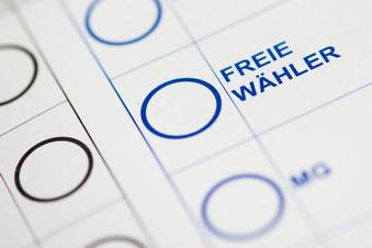 Sachsens Freie Wähler zerfallen