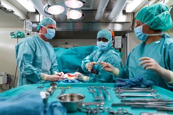Mehr Organspenden in Sachsen