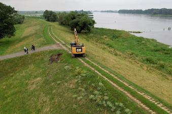 Sachsen setzt auf natürlichen Flutschutz