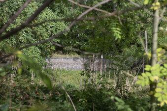 Prietitz: Problem-Teich wird Angelgewässer