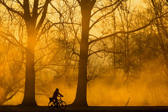Mehr Radwege durch Sachsens Wälder