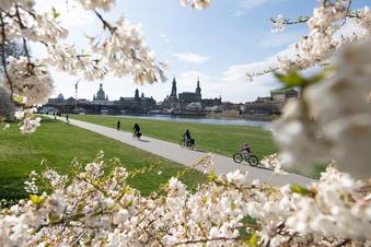 Sicher mit dem Rad durch Dresden