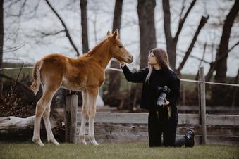 """""""Ich muss die Pferde nur sehen, dann bin ich glücklich"""""""