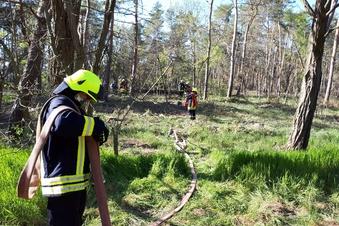 Feuerwehr löscht Brand im Kreinitzer Wald