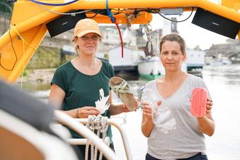 Dresden: Kampf dem Plastik in der Elbe