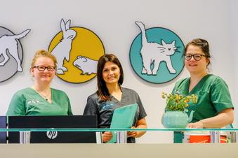 Die drei aus der Tierarztpraxis