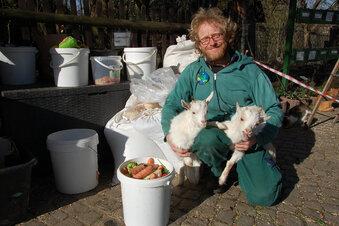 Bald wieder Bauernmarkt in der Hebelei?