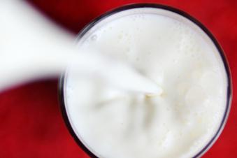 Macht Milch wirklich krank?