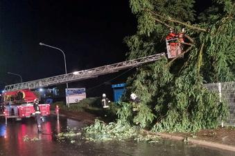 Bäume geknickt, Keller voll, Straße gesperrt