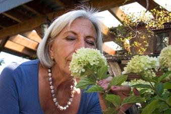 So bringen Sie Ihren Garten zum Duften