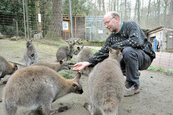 Stadt Meißen will Tierpark-Vertrag auflösen