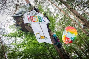 Umweltschützer besetzen Waldstück bei Ottendorf
