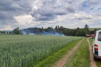 Der falsche Waldbrand