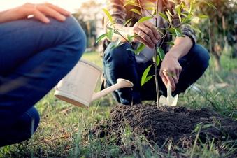 Noch freie Plätze für Ökologisches Jahr