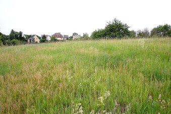 Baugrund für Wohngebiet wird untersucht