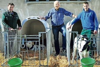 Kühe sollen es besser haben