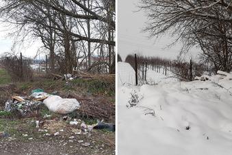 Noch mehr Heidenauer Müll
