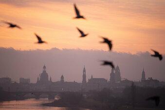 Warum Dresdens Einwohnerzahl sinkt