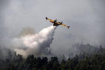 Lausitzer Grüne wollen Löschflugzeuge