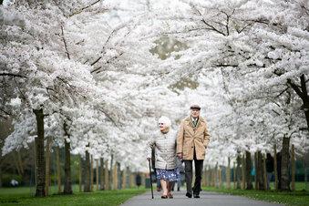 Oma und Opa allein zu Haus