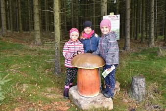 Die schönsten Familienwandertouren im Osterzgebirge