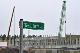 Tesla beginnt mit Bau von Batteriefabrik