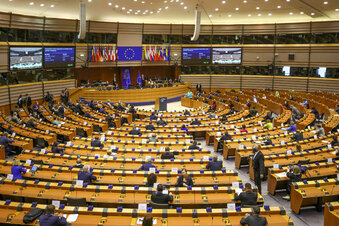 Politikerin aus Sachsen leitet EU-Ausschuss