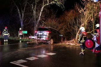 Auto schießt über die Straße in die Elbwiesen