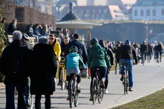 Dresdner Elberadweg: Tempolimit für Radfahrer?