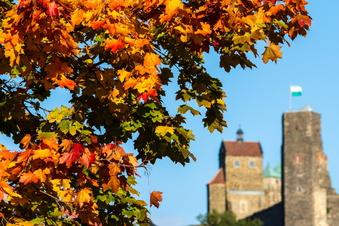 SOE: Der Herbst treibt es bunt