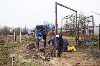 Kleingarten-Rückbau schreitet voran