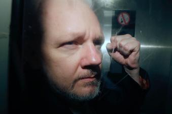 Assange soll Kinder mit Anwältin haben