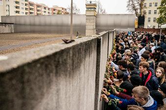 Wie der Görlitzer Zoo von der Berliner Mauer profitiert