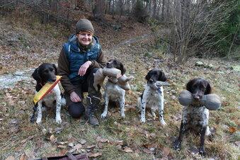 Wo Hunde jagen lernen