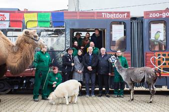 Diese Tierpark-Bahn fährt nun durch Görlitz