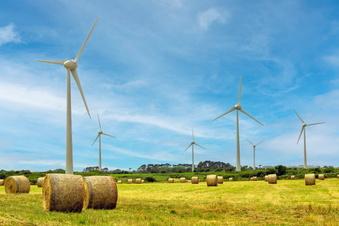 Firmen im Osten werten Nachhaltigkeit als Chance