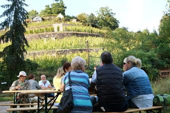 """Weinfest-Organisator: """"So harmonisch war es selten"""""""