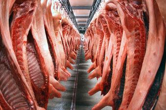 Hepatitis-E-Viren in Schweinefleisch
