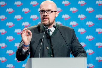 AfD in Sachsen-Anhalt jetzt unter Beobachtung
