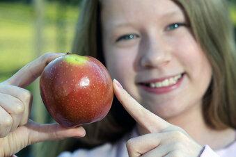 Obstland sucht Apfelgeschichten