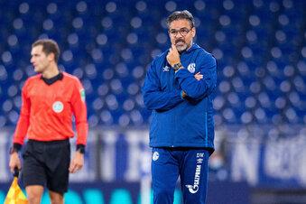 Schalke 04 trennt sich von Trainer