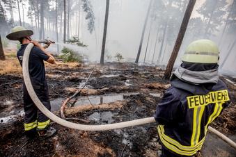 Sachsen: 2020 gab es über 100 Waldbrände
